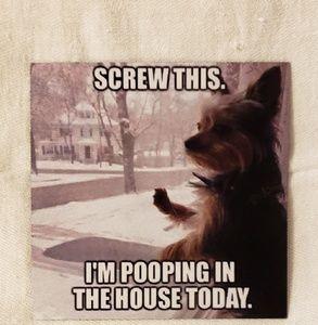 New Funny Doggie Humor Magnet